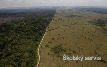 Odlesňovanie v Amazónii zničilo územie s rozlohou Veľkej Británie