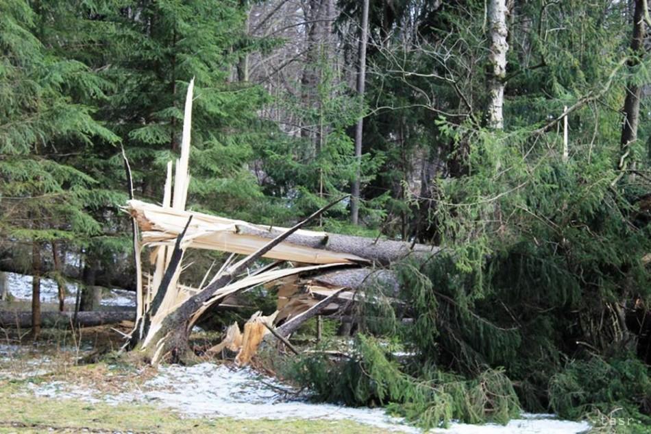 Víchrica v Demänovskej doline pováľala desiatky stromov na cestu