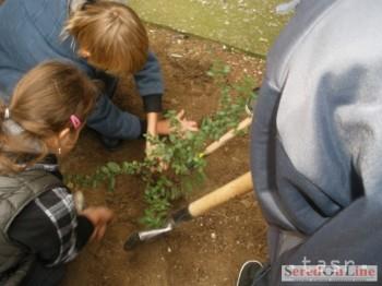 Prihlášky na Ekologický čin roka TTSK prijímajú do konca februára