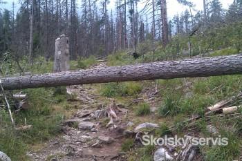 Vysoké Tatry volajú o pomoc