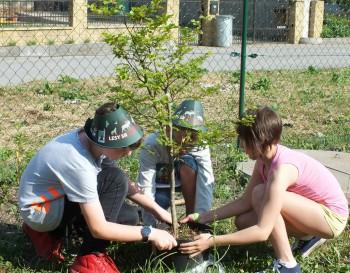 Bánovce nad Bebravou: Výsadbu drevín zabezpečila aj škola