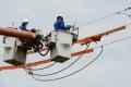 Špeciálne prvky na elektrických vedeniach majú zachrániť stovky vtákov