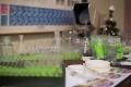 Pri výučbe chémie by mal zostať čas na experimenty, myslí si odborník