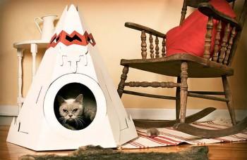 Najoriginálnejšie domčeky pre mačky. Tak tu bývajú!