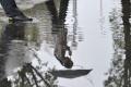 Silný dážď zaplavil v bratislavskej Rači niektoré cesty