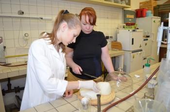 Slovenskej bryndzi pomáha veda, aby bola bezpečnejšia