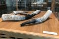 Zlínske múzeum oslavuje 70. výročie putovania Hanzelku a Zikmunda