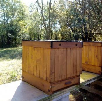 Včelársky workshop v obci Senné