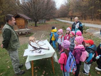 Rezort školstva je otvorený diskusii o detských lesných kluboch