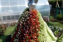 festival, kvety, záhrada