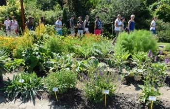 V Botanickej záhrade v Košiciach otvorili dendrologický náučný chodník