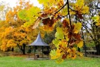 Jeseň v Košiciach