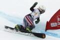 Z kalendára snoubordingu vypadol januárový paralelný slalom