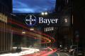Odvolanie šéfa Bayeru by koncernu v ničom nepomohlo