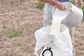 Máte radi mlieko, obzvlášť kozie? Môžete sa nakaziť encefalitídou