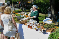 Festival Pribinova Nitrawa