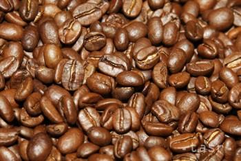 Prvá slovenská kávová plantáž pod krídlami Kolibríka
