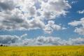V sobotu búrky ustanú, očakáva sa len malá oblačnosť