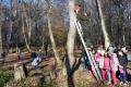 Lesníci pomáhajú vtáctvu rozmiestňovaním ornitologických búdok