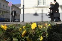 Na Slovensko už pomaly zavítala jar