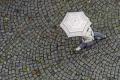 Jaro krásne všetkým tvorom spásne: Dnes treba rátať aj s dažďom