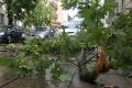 V Bratislavskom kraji zničili popadané stromy motorové vozidlá