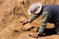 Archeologická sezóna Slovákov v Tell el-Retábí odkryla viaceré objavy