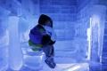 Infekciu močových ciest spôsobuje črevná baktéria a nie prechladnutie