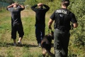 Výberová chronológia pomoci policajtov SR pri ochrane hraníc EÚ