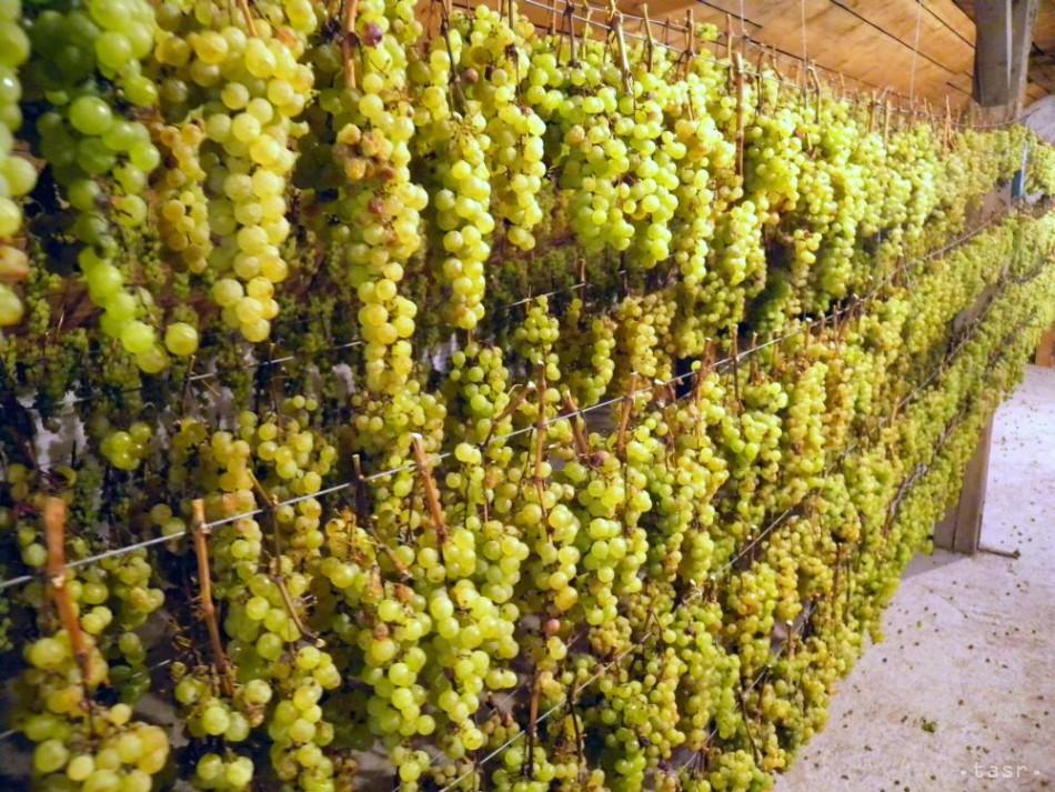Aké slávne vinári sú datovania