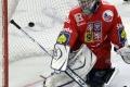 Do košického hokejového tímu pribudli českí brankári Kopřiva s Habalom