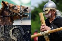 Kráľ Ľudovít II. nepadol v boji ako hrdina. O život ho pripravil kôň