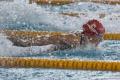 MS v plávaní: Slovenky v štafete na 4x50 m polohové preteky sedemnáste