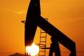 OPEC v novembri zvýšil svoju produkciu a dosiahol nový rekord