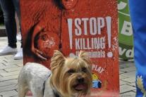 Ochrancovia zvierat