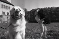 UNIKÁTNE FOTO: Toto sú top mačací a psí miláčikovia čias socializmu