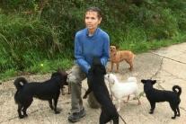 Anna sa stará o 16 psov, s jej svorkou sme ju stretli v hoteli