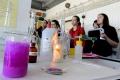 Bratislava bude hostiť najlepších mladých chemikov z celého sveta