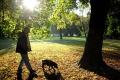 Nové pravidlá, ako pristupovať k voľnému pohybu psov, sú v 2. čítaní