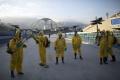 Svetoví experti žiadajú posunutie olympiády. Kvôli vírusu zika