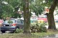 Poisťovňa Generali eviduje škody po búrkach za viac ako 90.000 eur