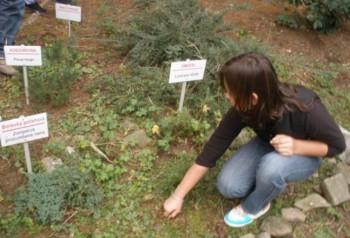 Myjavskí školáci si v novej ekoučebni dopestujú rastliny i  ovocie