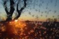 Výsledky školskej fotosúťaže Jeseň – zima