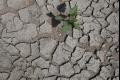 Mimovládky v SR sa rozhodli pomôcť Keňanom, ktorých postihlo sucho