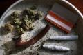 Albánska polícia spustila raziu proti pestovateľom marihuany