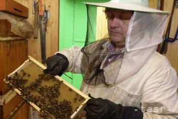 Na besede o včielkach sme ochutnali aj med