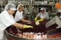 Prácu do Krivian by mohla priniesť obnova ovocinárskej tradície