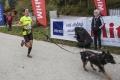 Canicross musí byť o potešení z behu, pre človeka i pre psa