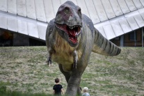 Výstava Dinosaurus City
