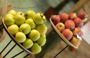 Na svete je prvý školský atlas starých odrôd jabloní a hrušiek
